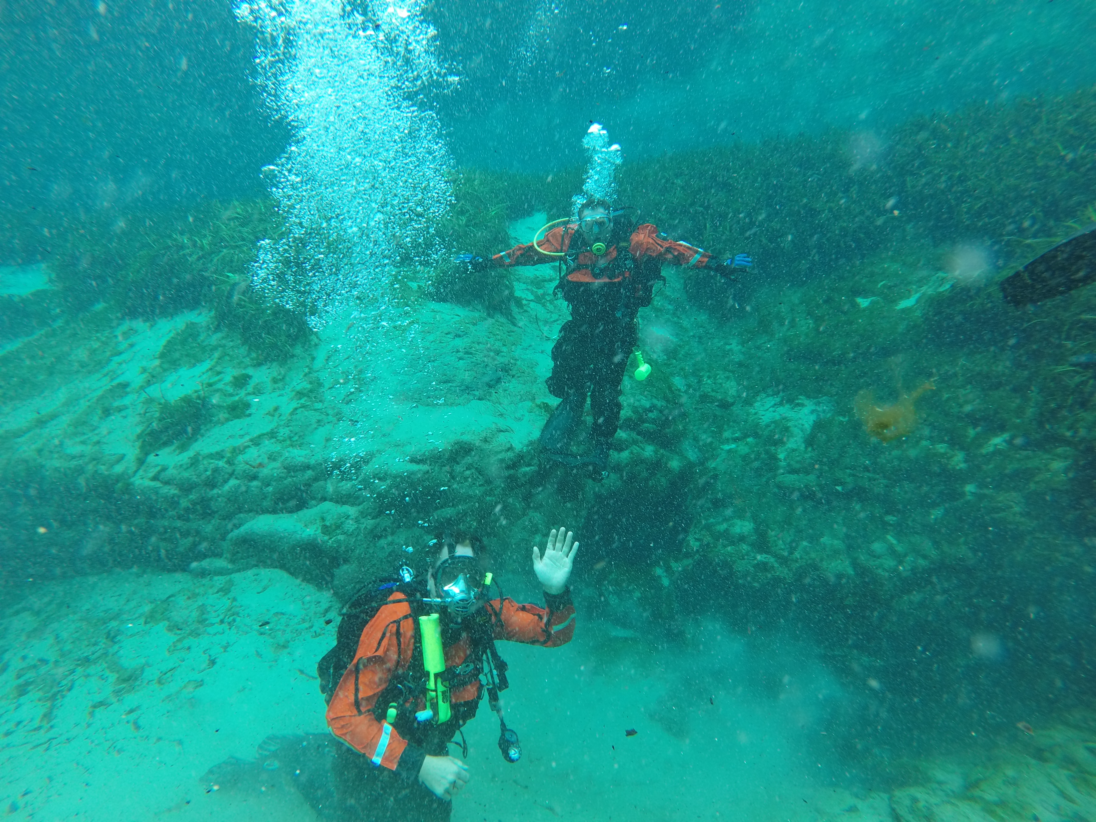 Divers under water with their scuba gear on